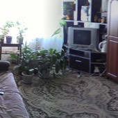 квартира 4 комнатная гавриловка