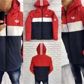 """Куртка мужская """"Adidas"""" *-10* синтапон 200 (2с"""