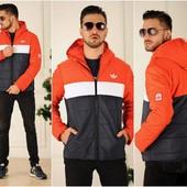 Куртка мужская Adidas *-10* синтапон 200 (2с