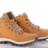 8678 Зимние , Стильные ботинки 2 цвета