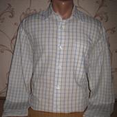 Рубашка мужская. Размер m (смотрите замеры). В хорошем состоянии!  Sasson.