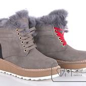 Модель: W9137 Ботинки женские