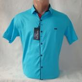 Распродажа! Мужская рубашка с коротким рукавом на кнопках Paul Semih, Турция. Разные цвета.
