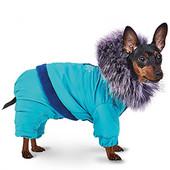 Комбинезон, костюм Max ( Макс) Pet Fashion