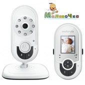 Видеоняня Motorola MBP421 напрокат (новая)