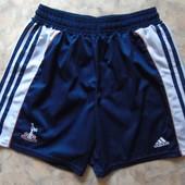 Спортивные мужские шорты 46