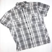 Мужская рубашка 100% коттон р.L (плечи 46, ог 110)