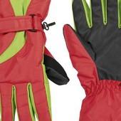 Женские лыжные перчатки Crivit . Размер 7