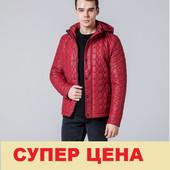 Куртка мужская Braggart -1386