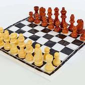 Шахматные фигуры деревянные с полотном для игр 3103-Wood: дерево, высота пешки 2,6см