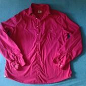 Продам рубашку Lacoste, размер 43.