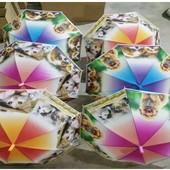 Зонтик детский CLG17006