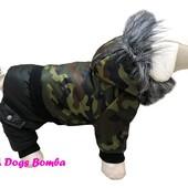 Одежда для собак оптом и в розницу. ТМ DogsBomba