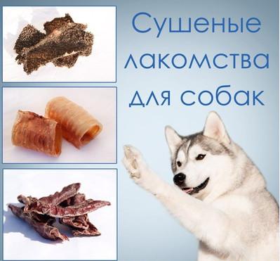 Сушеное лакомство для собак фото №1