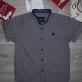 Next Premium Строгая стильная рубашка 5 л 110 см