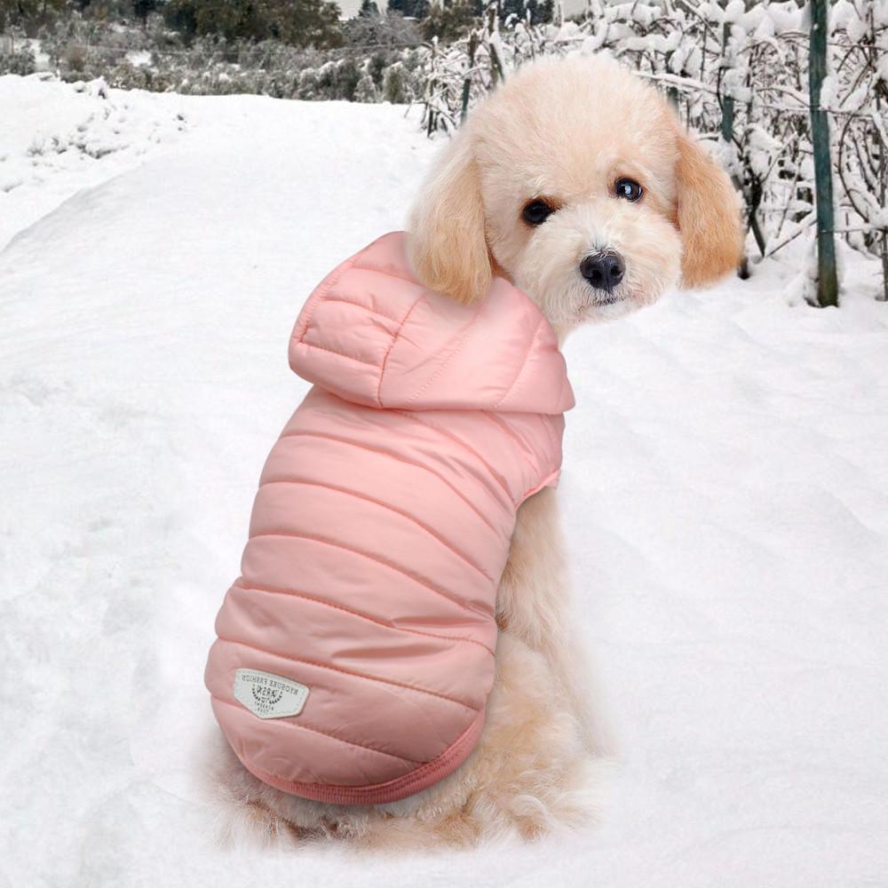 Жилетка на маленькую собачку. курточка для собаки.одежда для маленькой собаки . размер s. до 2кг фото №1