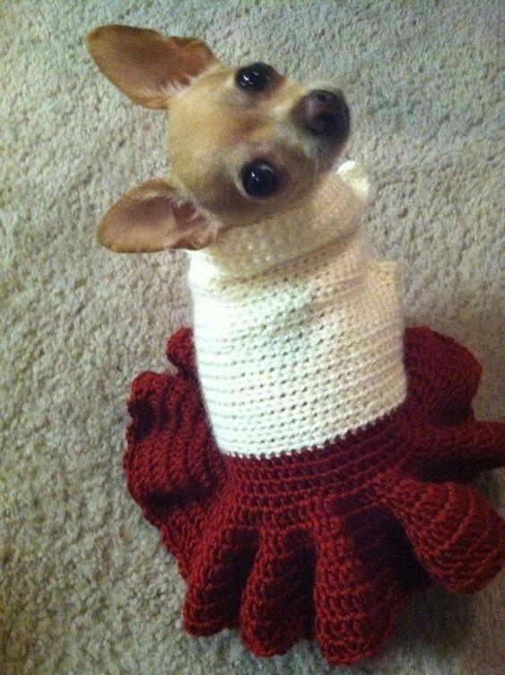 Вязаное платье для собаки фото №1